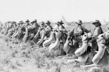 רוכבי גמלים אוסטרליים, סיני